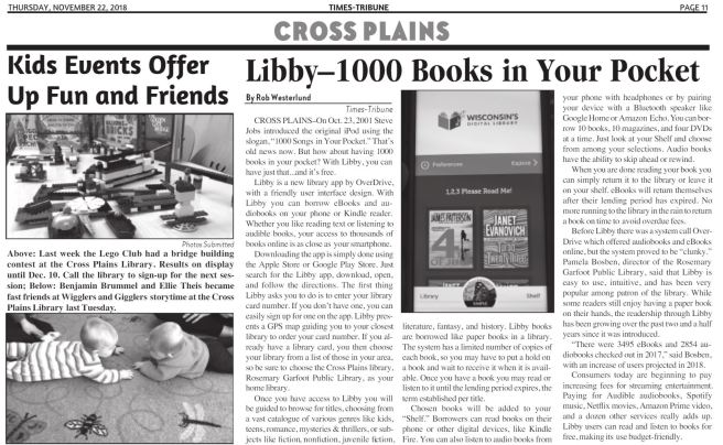 libby article